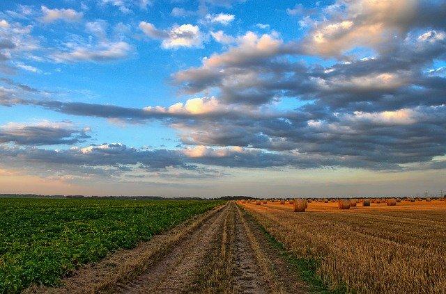 PLAN D'AGRICULTURE DURABLE (PAD) LES EFFORTS DES AGRICULTRICES RECONNUS, SOUTENUS ET RÉCOMPENSÉS!